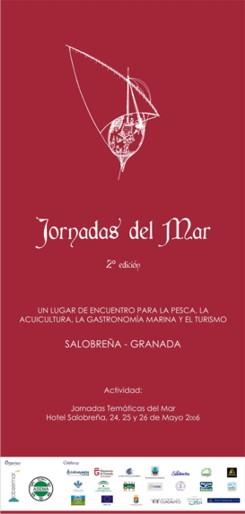 ACTUACIONES MAS DESTACADAS DE LAS II JORNADAS DEL MAR 2006