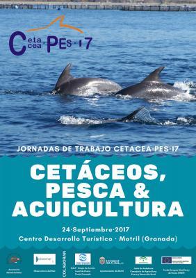 JORNADA CETACEA·PES 17