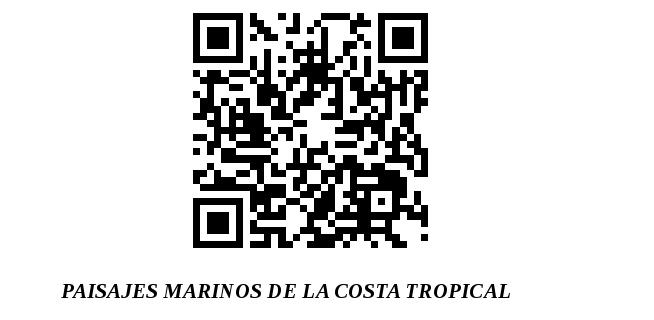 Diseñando el contenido del códigos QR de la sala del mar de Carchuna